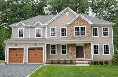 Warren Twp. Single Family Home For Sale: 25 Stiles Rd