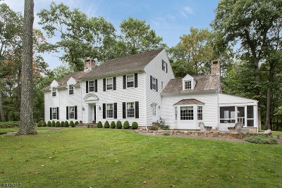 Bernardsville Boro NJ Single Family Home For Sale: $1,250,000