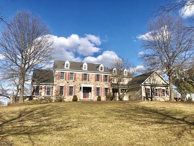 Branchburg Twp. Single Family Home For Sale: 17 Christie Way