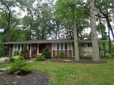 East Brunswick Twp. Single Family Home For Sale: 77 Independence Dr