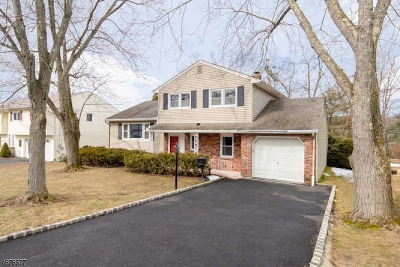 Rockaway Twp. Single Family Home For Sale: 65 Conger St