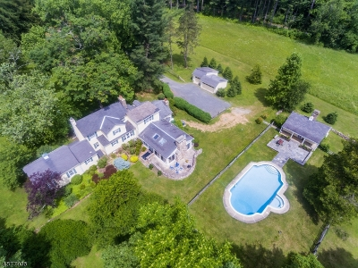 Hunterdon County Single Family Home For Sale: 28 Hollow Brook Rd