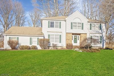 Roxbury Twp. Single Family Home For Sale: 28 Mountain View Rd