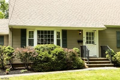 Florham Park Boro Single Family Home For Sale: 16 Roosevelt