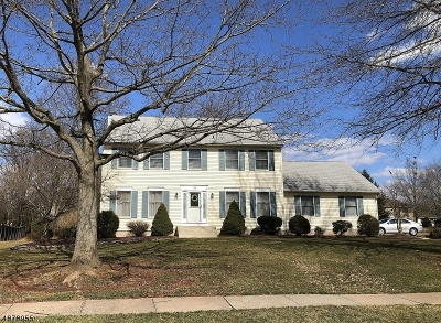 Hillsborough Twp. Single Family Home For Sale: 34 Francis Dr