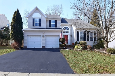 Montgomery Twp. Single Family Home For Sale: 111 York Dr