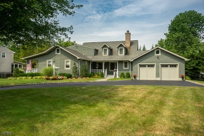 Florham Park Boro Single Family Home For Sale: 119 Crescent Rd