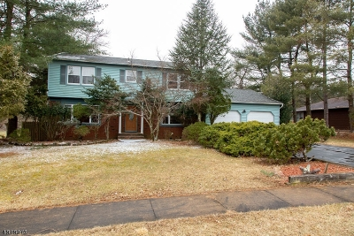Franklin Twp. Single Family Home For Sale: 21 Renfro Rd
