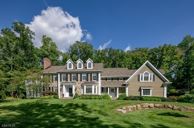 Bernardsville Boro NJ Single Family Home For Sale: $2,100,000