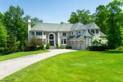 Warren Twp. Single Family Home For Sale: 9 Lexington Dr
