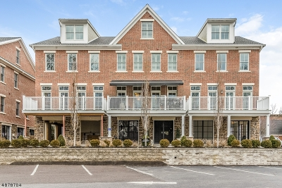 Frenchtown Boro Condo/Townhouse For Sale: 2 River Mills Dr #2