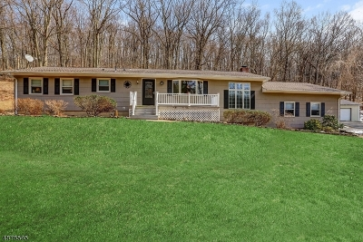 Bethlehem Twp. NJ Single Family Home For Sale: $399,000