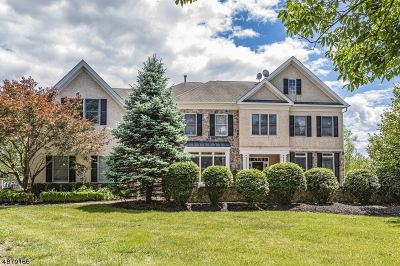 Montgomery Twp. NJ Single Family Home For Sale: $1,075,000