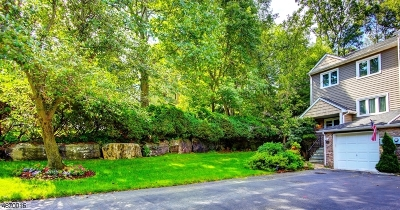 Parsippany-Troy Hills Twp. Condo/Townhouse For Sale: 121 Patriots Rd