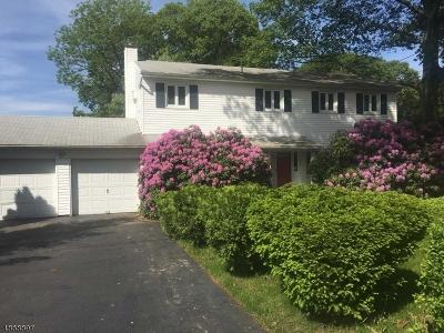 Rockaway Twp. Single Family Home For Sale: 17 Oswego Ave