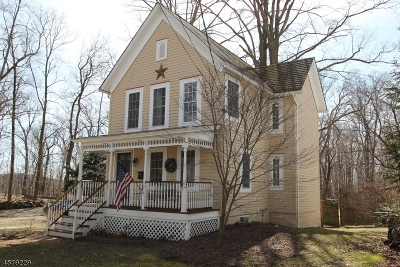 Newton Town Single Family Home For Sale: 12 Walker St