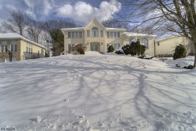Parsippany-Troy Hills Twp. Single Family Home For Sale: 38 Battleridge Rd