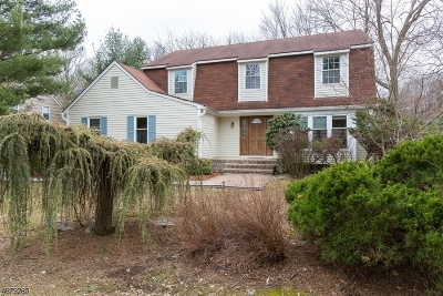 Morristown Town, Morris Twp. Single Family Home For Sale: 2 Applewood Ln