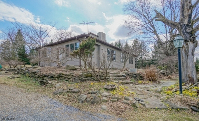 East Amwell Twp. Single Family Home For Sale: 46 Van Lieus Rd