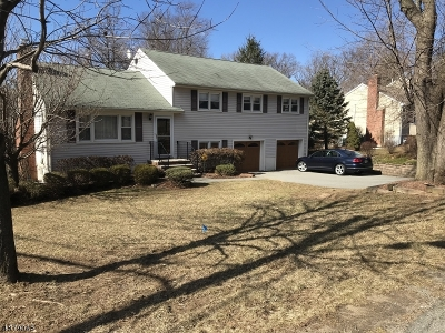 Denville Twp. Single Family Home For Sale: 355 Diamond Spring Rd