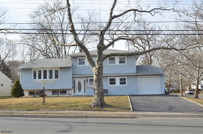 Springfield Single Family Home For Sale: 368 Meisel Ave