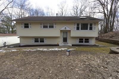 Roxbury Twp. Single Family Home For Sale: 33 Mountain Rd