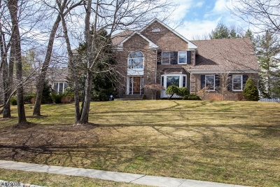 Morris Twp., Morristown Town Single Family Home For Sale: 4 Mark Twain Dr