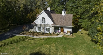Bedminster Twp. Single Family Home For Sale: 1260 Rattlesnake Bridge Rd