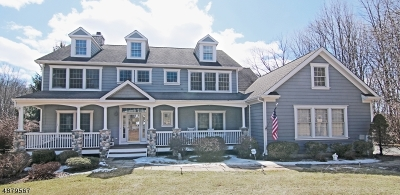 Mendham Twp. NJ Single Family Home For Sale: $949,900