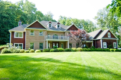 Mendham Twp. NJ Single Family Home For Sale: $1,199,000