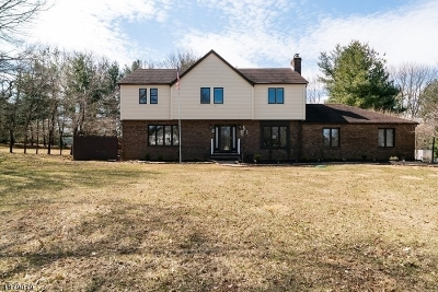 Raritan Twp. Single Family Home For Sale: 24 Horseshoe Dr