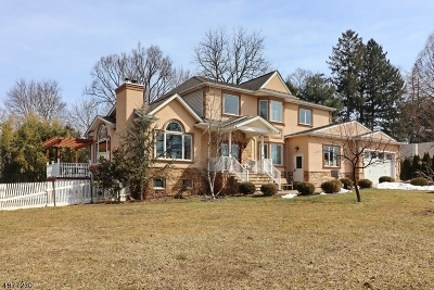 New Providence Single Family Home For Sale: 31 Earl Pl