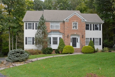 Randolph Twp. Single Family Home For Sale: 7 Twins Ct
