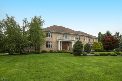 Far Hills Boro NJ Single Family Home For Sale: $1,950,000