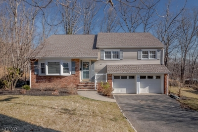 Morris Plains Boro Single Family Home For Sale: 11 E Crestview Ct