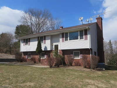 Clinton Twp. Single Family Home For Sale: 12 Studer Rd