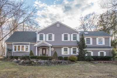 Randolph Twp. NJ Single Family Home For Sale: $659,000