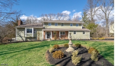 Bridgewater Twp. Single Family Home For Sale: 1739 Woodfield Rd