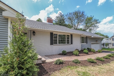 Somerset County Single Family Home For Sale: 325 Country Club Rd
