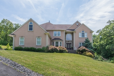Hardyston Twp. Single Family Home For Sale: 25 Stonehedge Dr