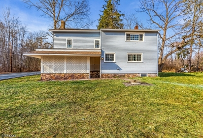 Franklin Twp. Single Family Home For Sale: 91 Sidney Rd