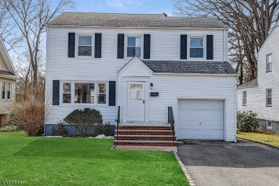 Livingston Twp. Single Family Home For Sale: 56 Brookside Ave