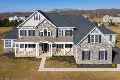 Alexandria Twp. Single Family Home For Sale: 46 Balmoral Dr