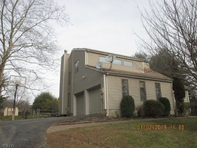 Holland Twp., Milford Boro Single Family Home For Sale: 50 Gridley Cir