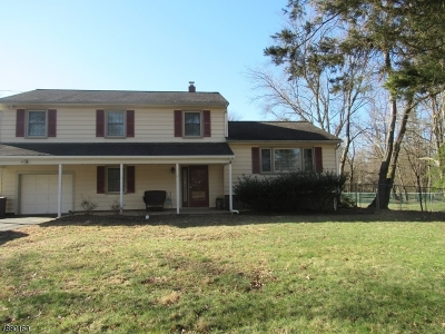 Somerset County Single Family Home For Sale: 496 Stony Brook Dr