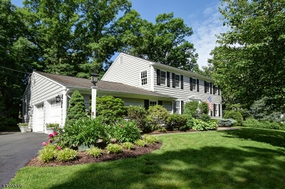Chatham Boro Single Family Home For Sale: 15 Chandler Rd
