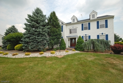 Raritan Twp. Single Family Home For Sale: 16 Running Brook Cir