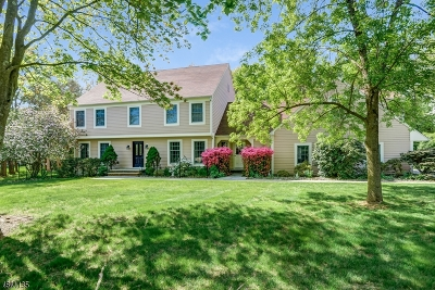 Bernards Twp., Bernardsville Boro Single Family Home For Sale: 10 Carriage Way