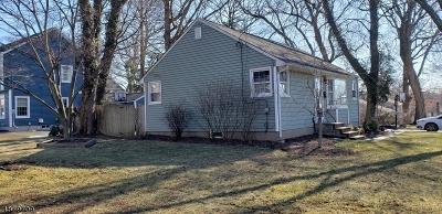 Oakland Boro Single Family Home For Sale: 3 Cornell Pl