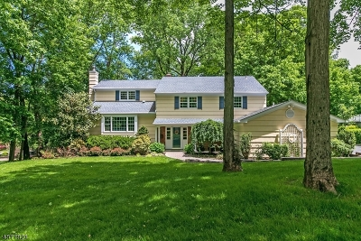 Berkeley Heights Single Family Home For Sale: 191 Lorraine Dr